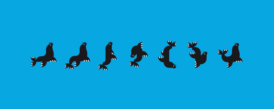 Serie de posiciones del lobo marino